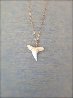 White Shark Tooth Necklace with Dainty 14k Gold Filled Chain / minimalist jewelry by MuffyandTrudy on Etsy