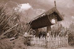 Maori Pataka - Hamilton, Waikato