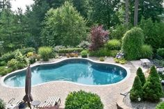 inground swimming pools | Inground Swimming Pools for Small Backyards