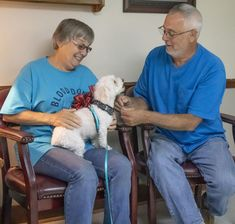 Warrenton Vet Reunites Lost Dog A Bichon Frise With Owners In