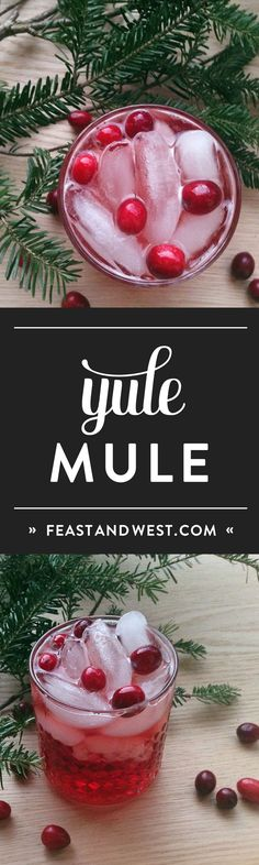 Based on the traditional Moscow Mule, the Yule Mule is a holiday cocktail featuring ginger beer and cranberries. Tastes just like Christmas! Festive Cocktails, Christmas Cocktails, Holiday Cocktails, Christmas Drinks Alcohol, Holiday Treats, Christmas Treats, Holiday Recipes, Christmas Recipes, Cointreau Cocktail