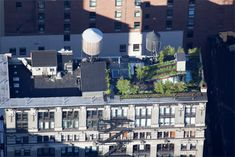 garden-with-water-tower NYC