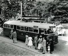 Trolleybus in Arnhem. Netherlands, Transportation, Tourism, Public, Street View, Museum, City, Coaches, Trains
