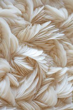 Capiz shells close up. Swirls of textured shells Cream Aesthetic, Gold Aesthetic, 90s Aesthetic, Aesthetic Photo, Aesthetic Pictures, Aesthetic Backgrounds, Aesthetic Iphone Wallpaper, Wallpaper Backgrounds, Aesthetic Wallpapers