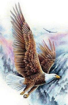 """""""Soaring Bald Eagle"""" Puzzle Puzzle """"Hochfliegender Weißkopfseeadler"""" Source by sandyspinboard The post """"Soaring Bald Eagle"""" Puzzle appeared first on My Art My Home. Eagle Pictures, Nature Pictures, Beautiful Birds, Animals Beautiful, Bald Eagle Tattoos, Eagle Artwork, Benfica Wallpaper, Bold Eagle, Eagle Wallpaper"""
