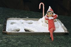 Elf on the Shelf 2010 (Fizzy): 12.17: Fizzy brings North Pole snow to Savannah. He made a snow angel (out of powdered sugar) and is ready for a snowball fight (donut holes).    It would have been cuter without the jelly roll pan, but way too much mess to clean up. This tray spent the night in the oven to protect it from our cats. She says he is silly and needs a bath - maybe tomorrow night :)