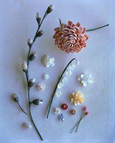 Shell flowers (Martha Stewart)