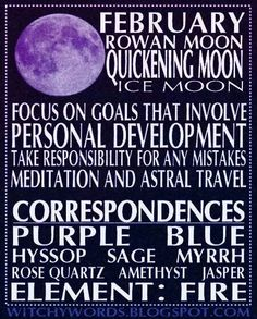 February Rowan Moon ☽✪☾