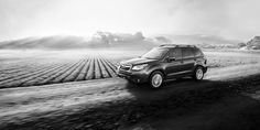2015 Subaru Forester models get eight new standard features
