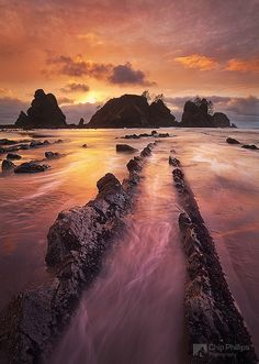 Olympic National Park- I'd like to go visit my brother here when he moves to Seattle