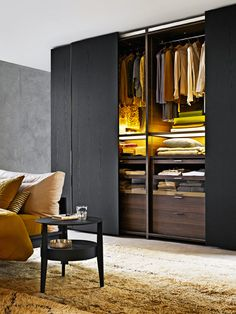 Gliss Quick wardrobe by the Molteni Design team has a vast range of interior finishes and exterior finishes.
