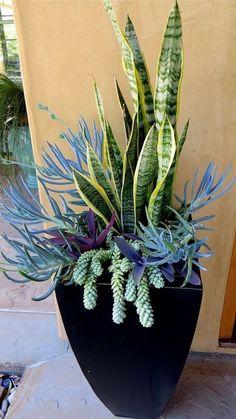 Container Garden Flowers Designs you Should Improve in your Garden https://www.possibledecor.com/2018/02/20/container-garden-flowers-designs-improve-garden/ #gardeningflowers
