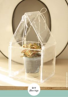 Zelf een glazen huis maken van oude cd hoesjes. Je leest het hier stap voor stap #cactus #plant