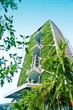Green streets: How plantlife is inspiring modern architecture - Virgin.com