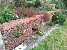 Alte Ziegel Mauern Im Garten Von unseren Redaktionsteams von Trockenmauer Aus De… Old Brick Walls In The Garden Of Our Editorial Team Of Drywall From The Old Bricks After One Year Garden Tiles, Garden Planters, Diy Garden, Garden Paths, Garden Bridge, Old Brick Wall, Brick Walls, Dry Stone, Walled Garden