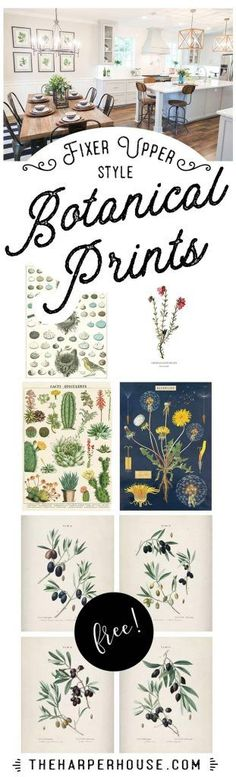 Great ideas on just HOW to display farmhouse style botanical prints. And a great roundup of where to find them! Fixer Upper, Free Printables, Botanical Art