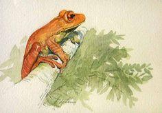 """Tree Frog"" Art by Lucia deLeiris"