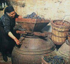 Wine-making like a BOSS! www.HeartCyprus.com