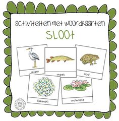 Kleuterjuf in een kleuterklas: Activiteiten met woordkaarten | Thema SLOOT