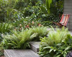 such a lush tropical shady garden