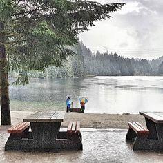 """Padało wtedy """"psami i kotami"""" . Ale co to za przeszkoda kiedy #natura wzywa na spacer prawda? Słońca życzę i 100% #fallvibes  . #raincouver Let's go to the beach  it is truly #laketime  . . . . . . . #jesiennie #juz #pada #deszcz #letsgosomewhere #kanadasienada #weekendvibes #melancholy #las #naszlaku #zwiedzamy #slowlife #beautifulbc #explorecanada #unlimitedcanada #canada_true #imagesofcanada #travelgram#intothewoods #intothewild #getoutstayout #getoutside #wildernessnation"""