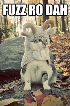 fuzz ro cat  - dragonborn cat (Love Skyrim and this is too cute!