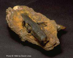 En junio de 1936 Max Hahn y su esposa Emma estaban dando un paseo, cuando se dieron cuenta de una roca sobresalia una madera de su núcleo. Se la llevaron a casa y abrió con un martillo y una roca chisel. La roca que encierra el martillo se remonta a más de 400 millones de año, el propio martillo resultaron ser más de 500 millones de años. La cabeza del martillo, hecha de más de 96% de hierro, es mucho más pura que cualquier naturaleza podría haber logrado sin la ayuda de la tecnología…