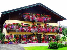 flowers at home st.martin lofer, Austria, Beautiful home Photos presented by the Salzburger Nachrichten Window Box Flowers, Balcony Flowers, Window Boxes, Flower Boxes, Colorful Flowers, Beautiful Flowers, German Houses, Outdoor Steps, Home Photo