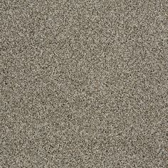 "Carpeting by Shaw Floors in style ""French Meadows Accent"" color Smoke Embers.. gorgeous texture with soft grey & taupe flecks..  perfect neutral for a modern update!"