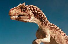 Pics Of Dinosaurs, Dinosaurs Series, Walking With Dinosaurs, Dinosaur Movie, Dinosaur Art, Land Of The Lost, Dangerous Animals, All Hero, Prehistoric Creatures
