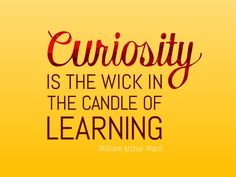 Curiosity Quotes Glamorous Curiosity Quote  Quotes  Pinterest