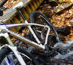 RG ccapone77: Fall Mountain Biking at Sunny Hollow #vt #mountainbiking http://instagr.am/p/9OrTbjll5w