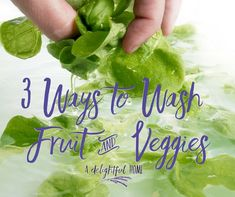 Wash fruit and veggies as part of a healthy living lifestyle. Even when choosing naturally organic washing your produce is a must. How To Wash Vegetables, Fruits And Veggies, Lettuce, Cooking Tips, Healthy Lifestyle, Healthy Living, Clean Eating, Organic, Cleaning