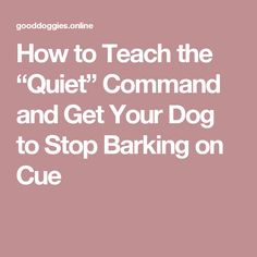 """How to Teach the """"Quiet"""" Command and Get Your Dog to Stop Barking on Cue"""