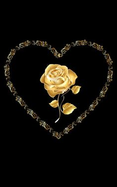 Black and Gold I Flower / Heart Flower Phone Wallpaper, Gold Wallpaper, Heart Wallpaper, Beautiful Flowers Wallpapers, Beautiful Gif, Beautiful Roses, Black And Gold Aesthetic, I Love You Images, Love Backgrounds