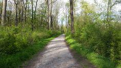 Stadtwanderweg 5 - Stammersdorf und Bisamberg, Wien Country Roads, Tours, Hiking, City