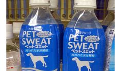 Japanese use of english for branding never quite gets it right!