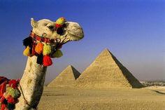 tours a las piramides de Guiza del puerto de port said en Egipto #tours_piramides_de_port_said #tour_sakkara_desde_port_said  http://www.maestroegypttours.com/sp/Excursiones-en-Tierra/Excursiones-del-puerto-de-Port-Said/Tours-a-las-Pyr%C3%A1mids-de-Guiza-y-Sakkara-desde-el-Puerto-Pot-Said