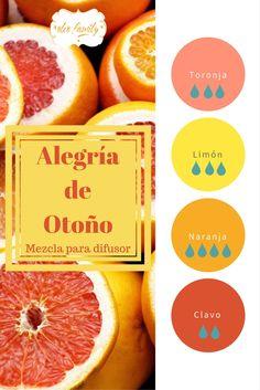 Toronja ayuda a despertar el amor propio, Limón a concentrarnos, Naranja a estar felices y Clavo a quitar el miedo al rechazo. Excelente mezcla para inspirarte.