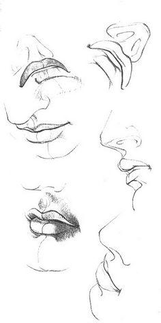 mouth+bits.jpg (391×782)