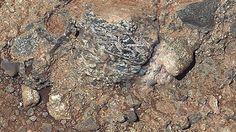 G.A.B.I.E.: Un hallazgo en Marte revela que el Planeta Rojo es...