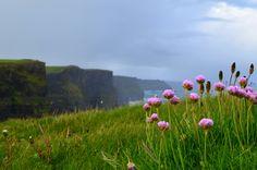 The Wild Atlantic Way Cliffs Of Moher, Shots