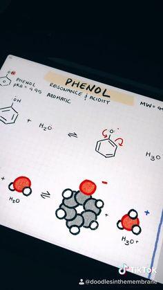 Doodles in the Membrane - Organic Chemistry Educational Infographics TikTok