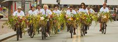 fleet of flower bicycles by azuma makoto take to the streets of são paulo