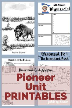Study American History the fun way ! Pioneer America (American Girl Kirsten) Printable Power Pack is the perfect companion to use with the FREE Pioneer Unit Canadian History, American History, American Girl, At A Glance Planner, Family History Quotes, Book Page Roses, Nasa History, History Activities, History Classroom