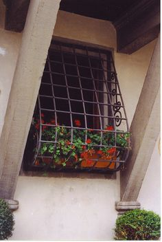 Allows for gardening inside the home. It also gives off an international feeling with the window barred off. (Reminds me of windows and homes in Spain)