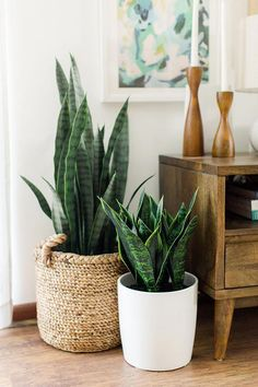 plant stand design ideas for indoor houseplants - page 38 of 67 - lo . plant stand design ideas for indoor houseplants - page 38 of 67 - lovein home. Modern Interior Design, Interior Design Living Room, Modern Interiors, Mid Century Interior Design, Asian Interior, Scandinavian Interior Design, Mid Century Design, Decoration Plante, Decoration Home