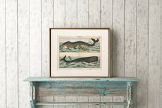 Large Vintage Bowhead Whale Print C. 1878 by AntiquePrintBoutique