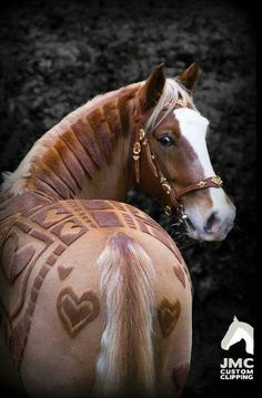 Challenge yourself to new extremes. Groomers remember your horse is a canvas and your skills your art.