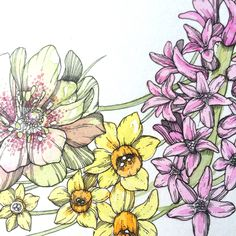 Drawing a Day from Abigail Bell - Your Daily Petal... Day Five, Springtime Garland (closeup).
